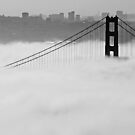 Rising Above the Fog by Patricia Montgomery