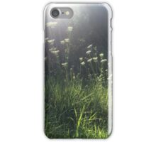 Sunlight Taking Baby's Breath iPhone Case/Skin