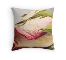 Lifes limitations Throw Pillow
