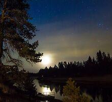 Moonlit Dance by MeghannKPhoto