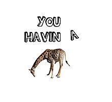 You having a giraffe? Photographic Print