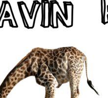 You having a giraffe? Sticker
