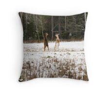 Buck Fawns 2 Throw Pillow