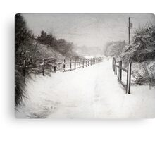 Silence of Snow  Canvas Print