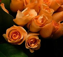 Peachy Roses by Gary Pope