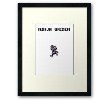NINJA GAIDEN Framed Print