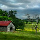 Southern Tennessee Barn by Gary Pope