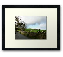 Cumbrian Cows Framed Print