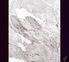 Maine USGS Historical Map Scraggly Lake SE 807132 1975 24000 Inversion by wetdryvac
