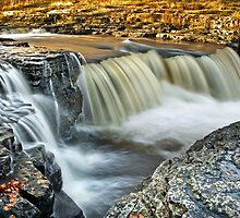 Aysgarth Lower Falls, Yorkshire Dales by Steve  Liptrot