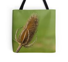 Dried Thistle. Tote Bag