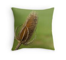 Dried Thistle. Throw Pillow