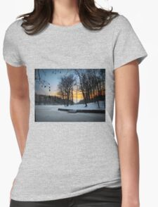 Ice Everywhere Womens Fitted T-Shirt