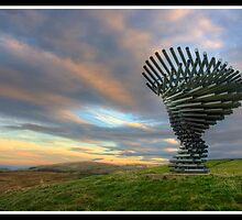 Singing Ringing Tree Panopticon (another angle) by Shaun Whiteman