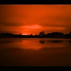 Red of the night  by chrisblackwell29