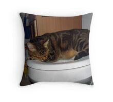 Strange Place to Sleep Throw Pillow