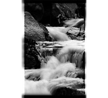 00389 Photographic Print