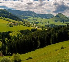 Austria - Land of Contented Cows by Robert C Richmond