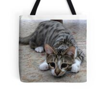 Monty the lively Cat  Tote Bag