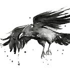 Flying Raven Watercolor by OlechkaDesign