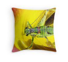 Colourful Katy  Throw Pillow