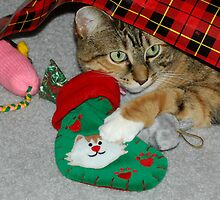 Lilly And Her Christmas Gifts by Kathleen Struckle