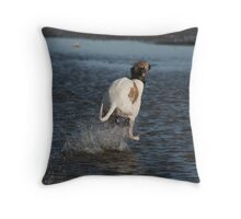 Lily, skimming the Strait. Throw Pillow