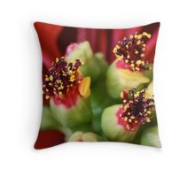 Christmas Bouquets Throw Pillow