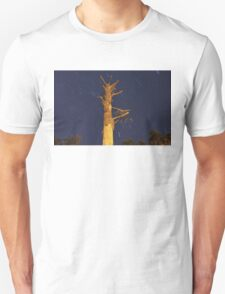 Shaved Tree and Star Trails T-Shirt