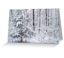 Snowy Forest Wonderland Greeting Card