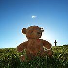 Teddybear Picnic by Aaron Bradford