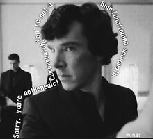 Sorry You're not Sherlock BW by munac