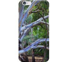 Oh!  You Beautiful Tree iPhone Case/Skin
