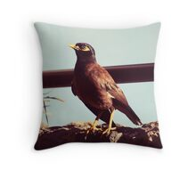 Mynah bird in Po'ipu, Kauai Throw Pillow