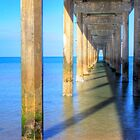 Brighton Jetty in the morning by Elana Bailey