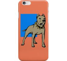 PIT BULL-5 iPhone Case/Skin