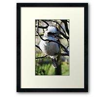 Kooky And I Know It Framed Print