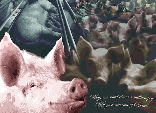 Why we could clone a million pigs from just one can of Spam! by Lyn Fabian