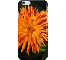 Bursting with Colour iPhone Case/Skin