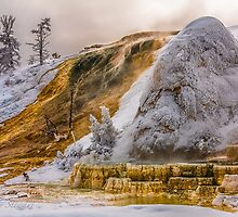 WINTER HOT SPRINGS by Sandy Stewart