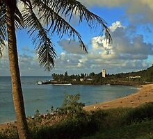 Waimea Bay Beach Park by Clark Thompson
