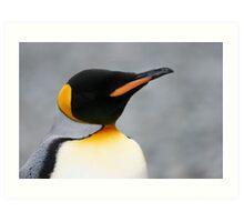 Solo penguin Art Print