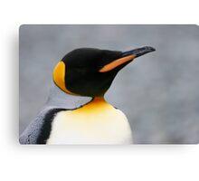Solo penguin Canvas Print
