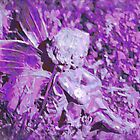 Away with the Fairies - Purple Haze by Pamela Jayne Smith