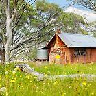 JB Plain Hut, Mt Hotham, Victoria, Australia by Michael Boniwell