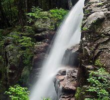 Alongside Avalanche Falls by Kenneth Keifer