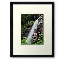 Alongside Avalanche Falls Framed Print