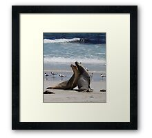 flying fur Framed Print