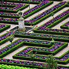 Formal Garden - Chateau Villandry, Loire Valley 2 by Alison Cornford-Matheson