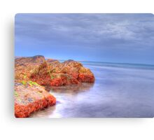 Martian Water`s Canvas Print